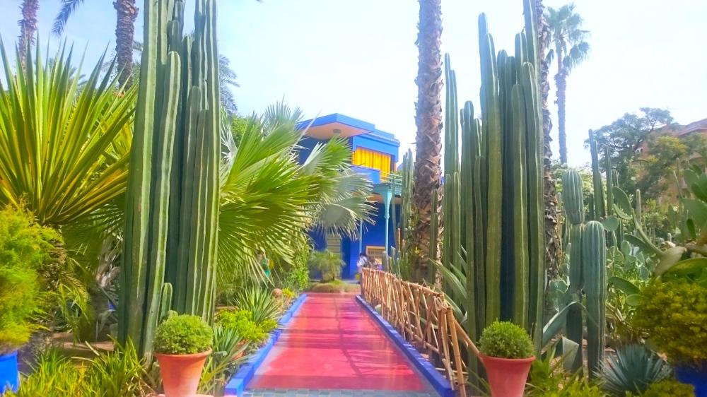 Jardin-majorelle-Marrakesh-Morocco